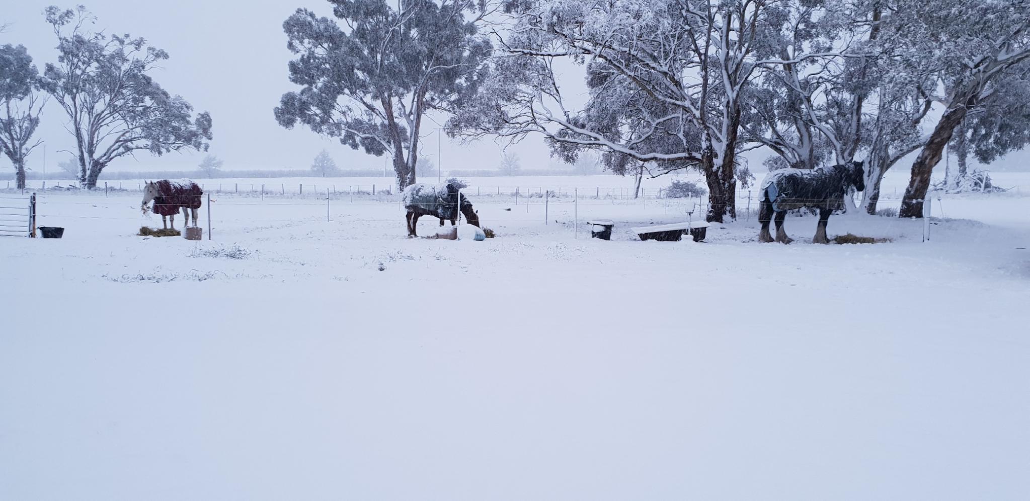 Tasmania had a fair blast of cold weather